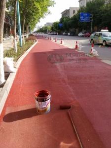 新疆昌吉自行车道
